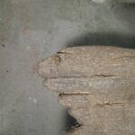 insegna-vecchio-legno-5